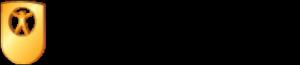 Без-заголовка-300x65